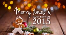 Buon-Natale-2015-La-Capannina-ristorante-pizzeria-torino